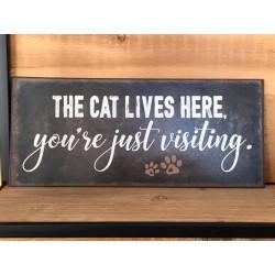 Cartello in metallo Cat