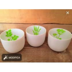 Tris di vasi in porcellana bianca Herbs